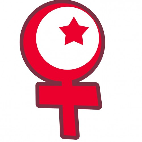 What is the Islamic Feminist Critique of Western Feminism?